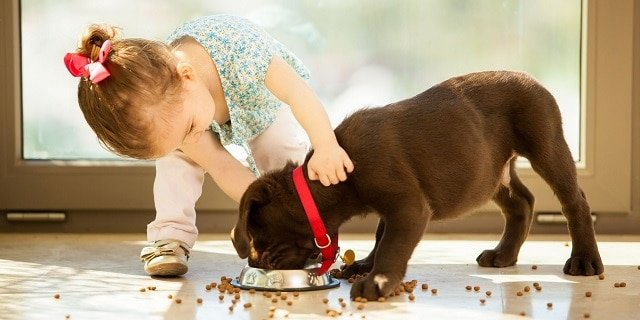 Kid with pet